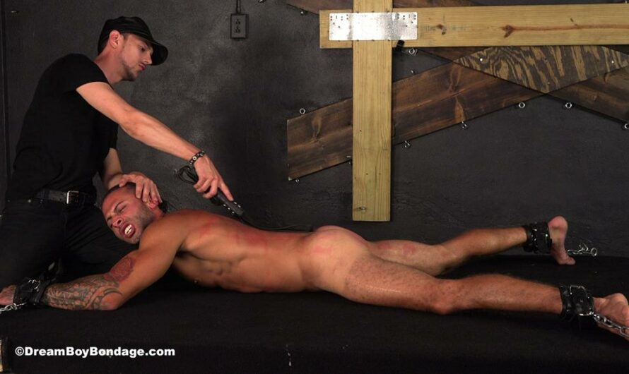 DreamBoyBondage – Julian – The Wages of Sin – Chapter 7