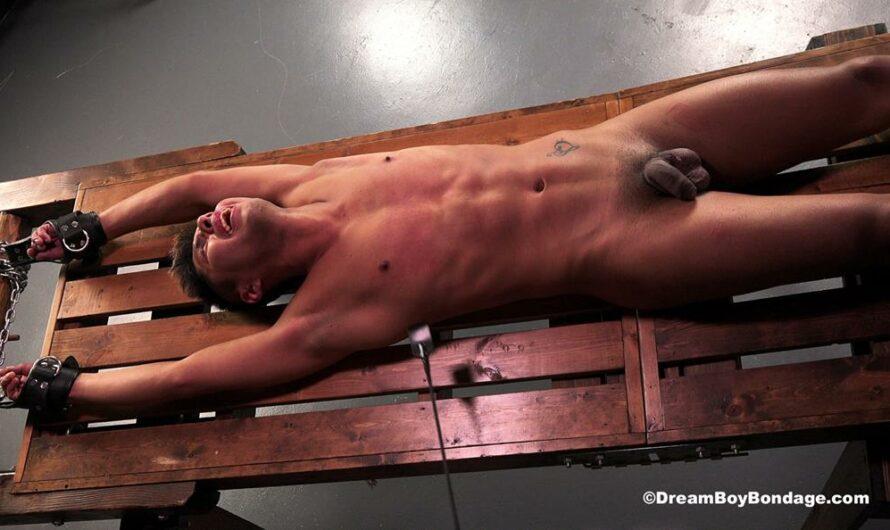 DreamBoyBondage – Gabriel Cruz – Taken for Torture – Chapter 9