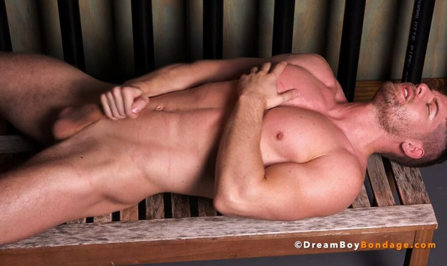 DreamBoyBondage – CONNOR HALSTED – Porn Boy Owned – Chapter 8