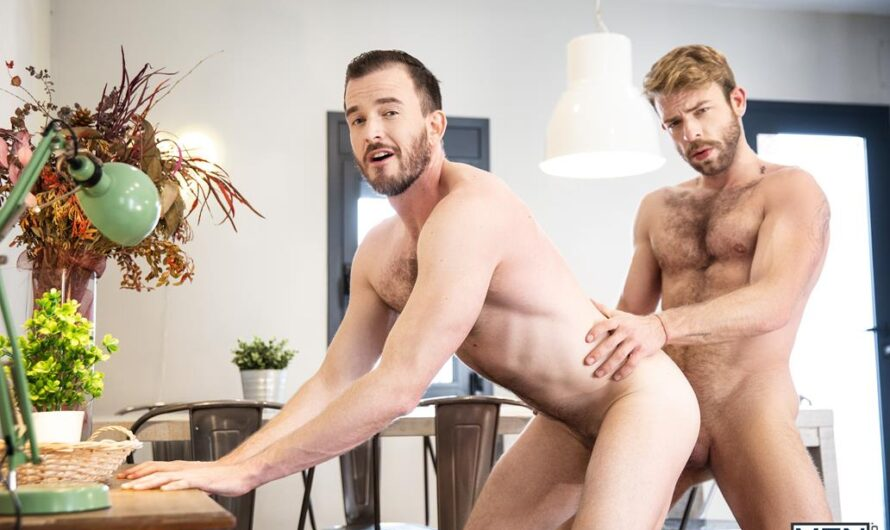 MEN.com – A Day in the Life Bareback – Gabriel Phoenix, Franky Fox